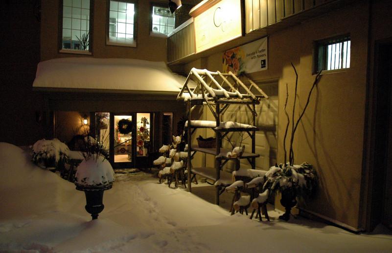 Rear Entrance December 2008
