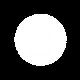 f_flt_entertainment_logo_02-08.png