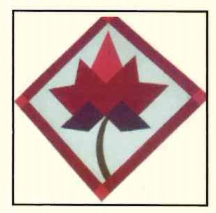 45. Red Maple Leaf