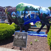 Indiana Bison-tennial Public Art Project