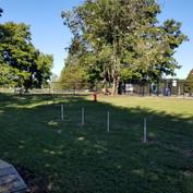 Tree City Bark Park