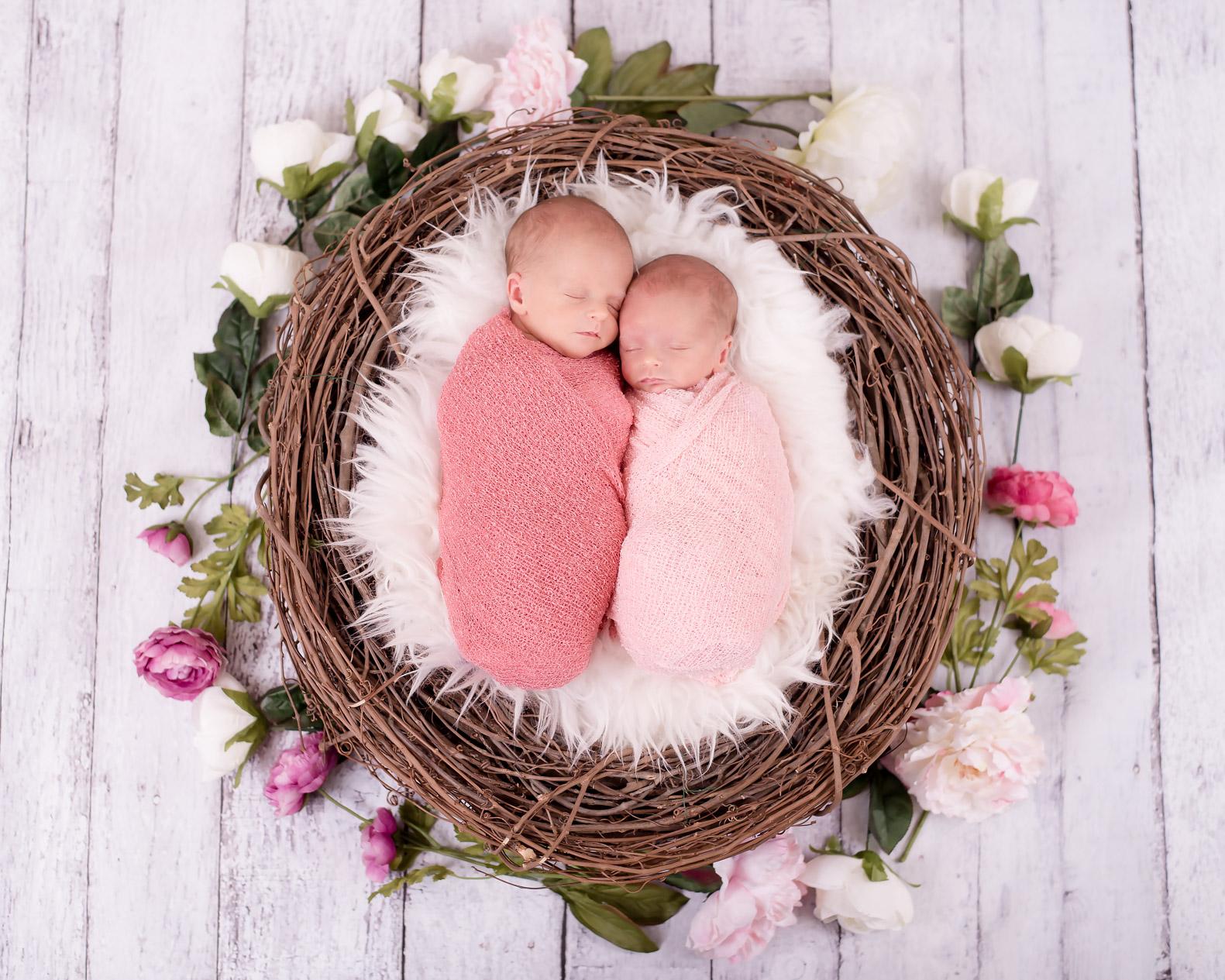 Twin GirlsDSC_3108-Edit.jpg