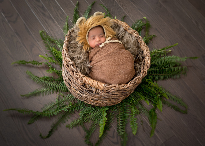 Toronto West / Mississauga East Photographer | Baby Sahil, a Brother for Rosie | Brampton Newborn