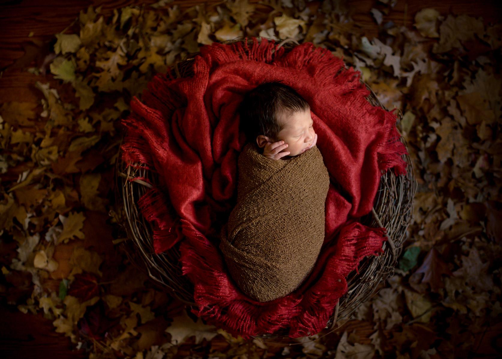 Baby Sebastian42.jpg