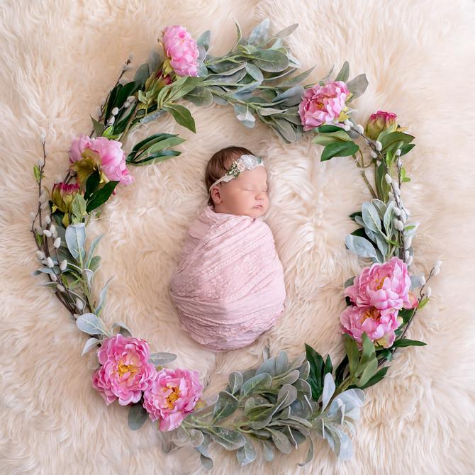Toronto West / Mississauga East Photographer | Baby Evelyn | Toronto Newborn