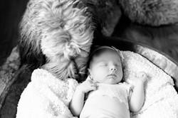 Baby Bowen - Jamie & MelissaDSC_8605-Edit-Edit.jpg