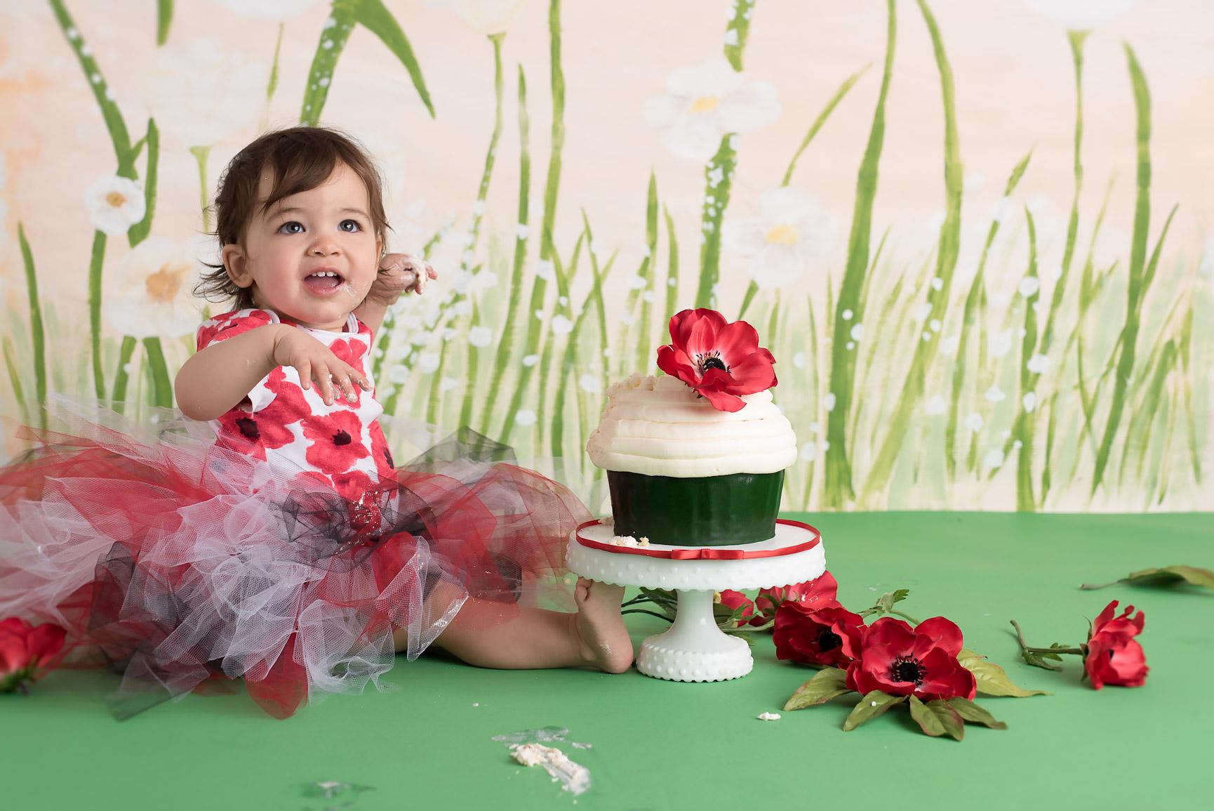 Cake Smash PoppyDSC_6488-Edit.jpg