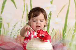 Cake Smash PoppyDSC_6468-Edit.jpg