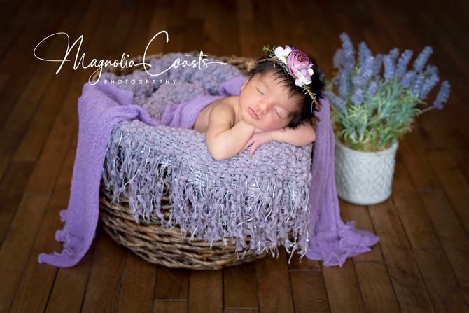 Toronto West / Mississauga East Photographer | Baby Alina | Newborn