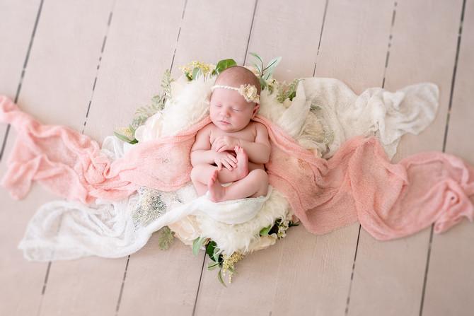 Toronto West / Mississauga East Photographer | The littlest girl in the house | Toronto Newborn