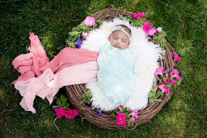 Toronto West / Mississauga East Photographer   Baby Savera   Toronto Newborn