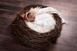 Baby AidenDSC_2891-Edit.jpg