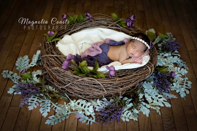 Toronto West / Mississauga East Photographer   Baby Mia at 4 Days   Newborn