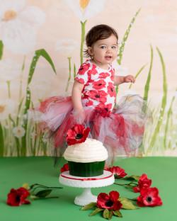 Cake Smash PoppyDSC_6465-Edit.jpg