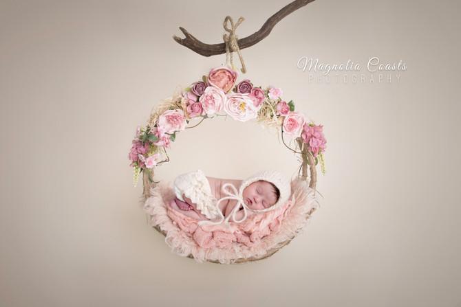 Toronto West / Mississauga East Photographer   Little Ballerina   Stouffville Newborn