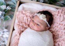 Baby Cairo DSC_1562-Edit.jpg