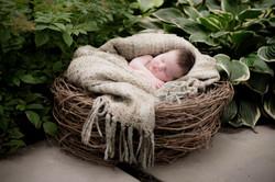 Matthew in the Nest.jpg