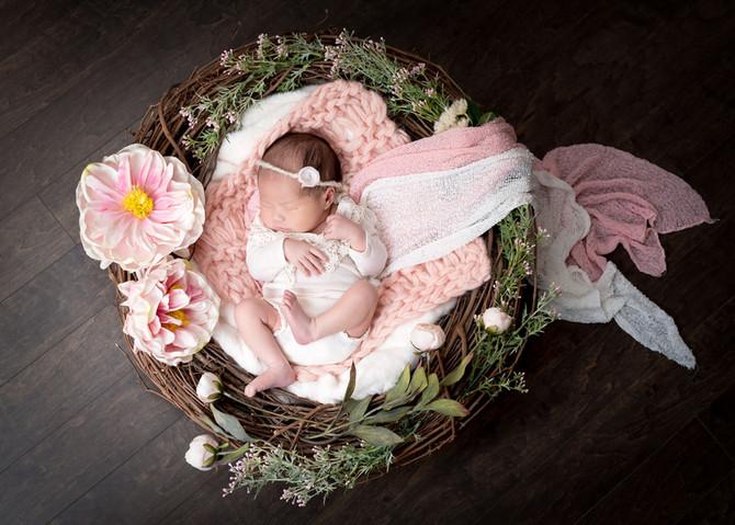Toronto West / Mississauga East Photographer | Baby Nari in Blue | Toronto Newborn