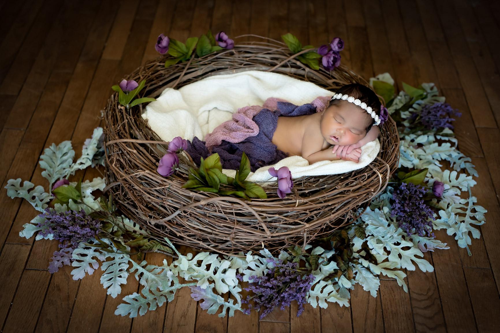 Baby MiaDSC_7387-Edit-Edit.jpg