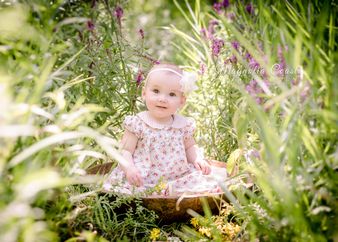 Toronto West / Mississauga East Photographer   Bronwyn is 9 months   Grow with Me