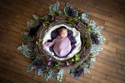 Baby MiaDSC_7365-Edit.jpg