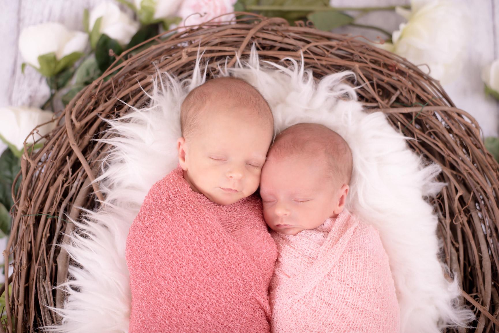 Twin GirlsDSC_3111-Edit.jpg