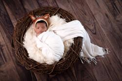 Baby AidenDSC_2886-Edit.jpg