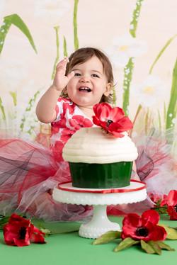 Cake Smash PoppyDSC_6470-Edit.jpg