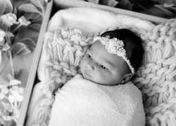 Baby Cairo DSC_1562-Edit-Edit.jpg