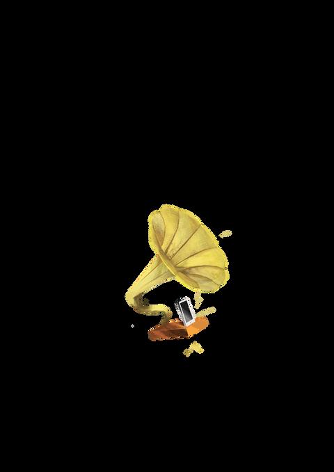 MODERN GRAMOPHONE   |   campari