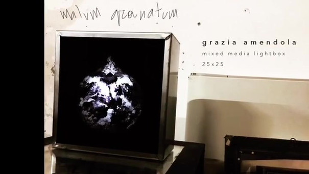 Gif creation // MALUM GRANATUM
