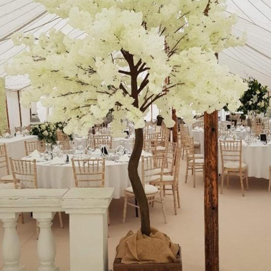 Weddings and Events 013