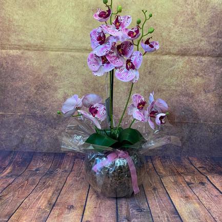 Silk Flowers 043