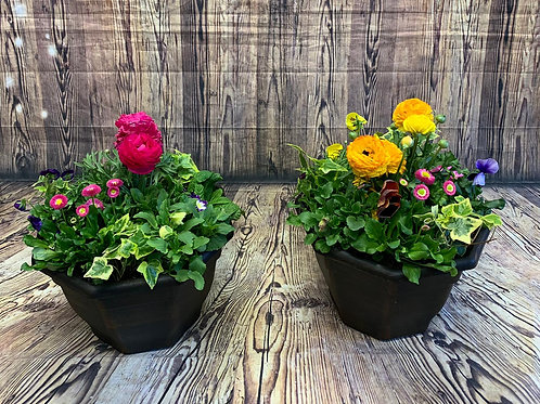pair of large outdoor seasonal planters Free delivery from the flower shop kirton