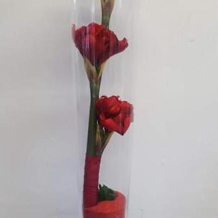 Silk Flowers 021