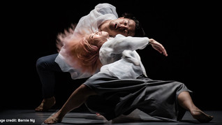 THE FORECAST LOOKS BRIGHT FOR AUSTRALASIAN CONTEMPORARY DANCE