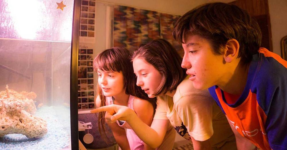 Children looking at aquarium