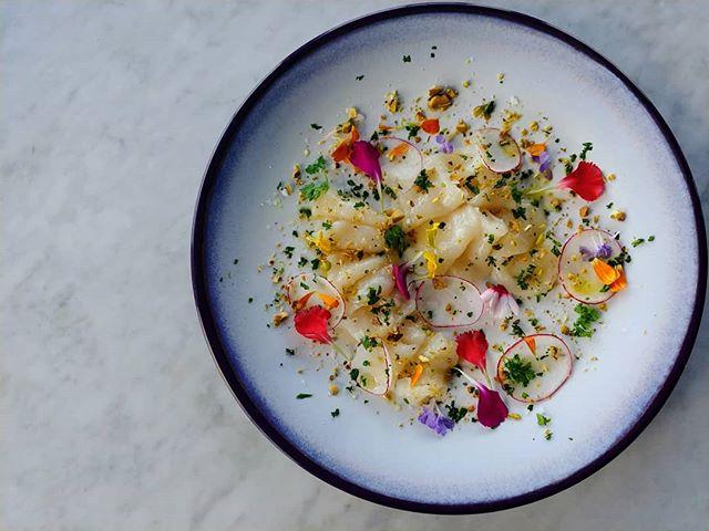 Scallop Carpacio, yuzu, pistachio pesto #foodie #food #chefsroll #chefsofinstagram #bothellwa #bothe