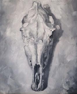 """Horse Skull 8""""x 10"""" Framed"""