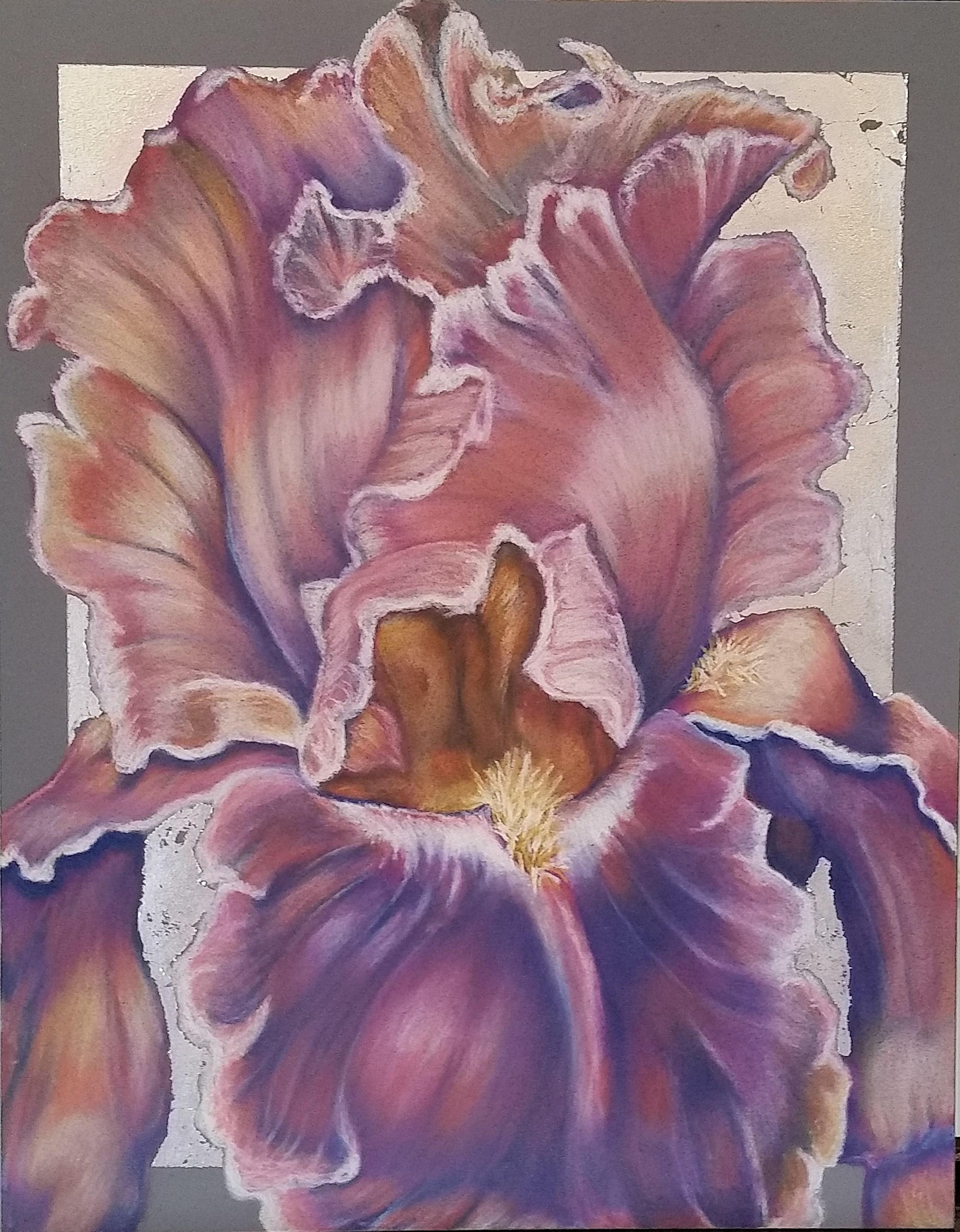 Iris Purples w/silver leaf