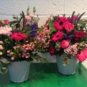 Bucketful of Blooms.