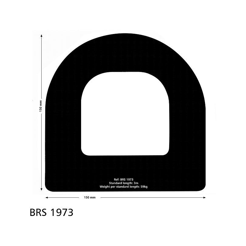 BRS 1973 FENDER