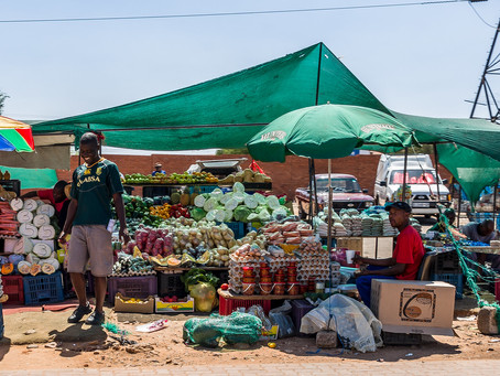 Zimbabwe: Surviving COVID-19