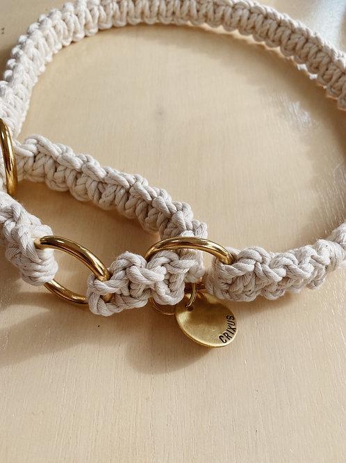 Preorder Brass- Box Martingale Collar