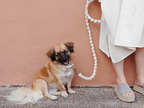 WS Pearl Lounge Leash