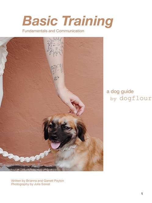 A Dog Guide by dogflour: Communication Fundamentals and Walking