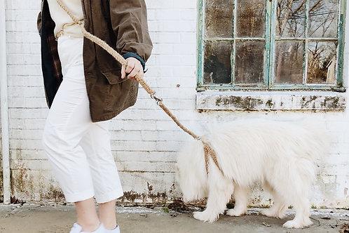 WS Box Short leash Attachment