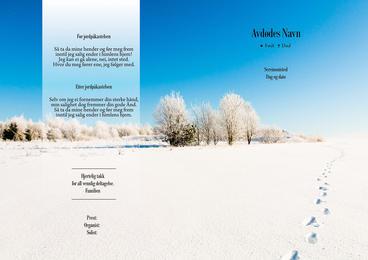 1191 Vinter med spor i snø