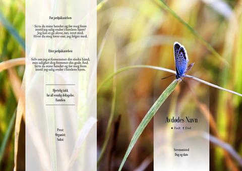 4161 Sommerfugl i graset