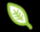 STA003_BL_Leaf-09.png